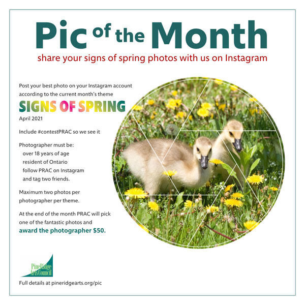 April Pic of the Month